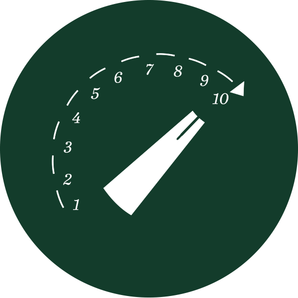 Icon speed up